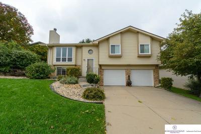 Omaha Single Family Home New: 4610 N 126 Street