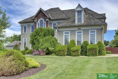 Omaha Single Family Home For Sale: 16172 Spencer Street