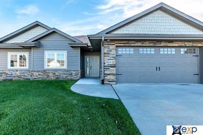 Omaha Single Family Home For Sale: 19217 Ontario Circle