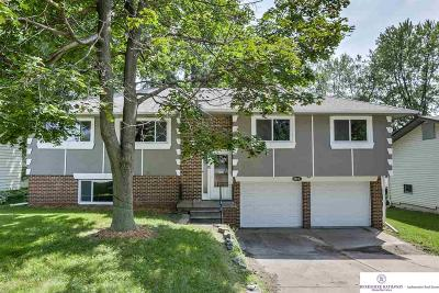 Single Family Home For Sale: 10211 M Street