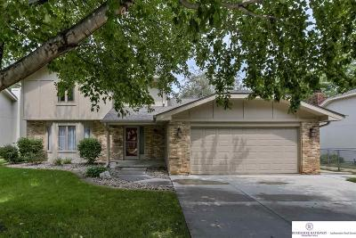 Omaha NE Single Family Home New: $255,000