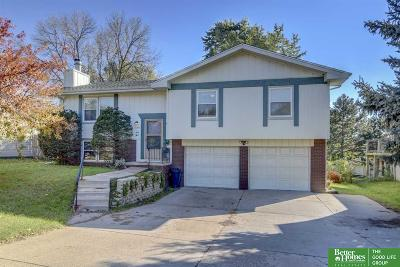 Omaha NE Single Family Home New: $169,500
