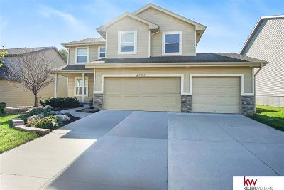 Sarpy County Single Family Home For Sale: 4305 Edgerton Drive