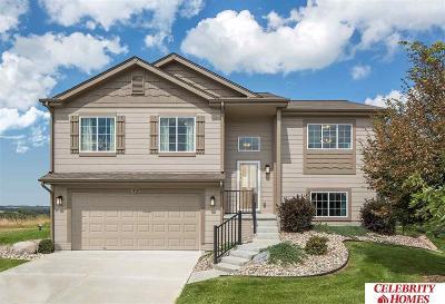 Bellevue NE Single Family Home New: $215,400