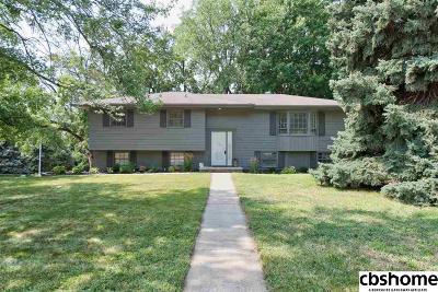 Omaha NE Single Family Home New: $230,000