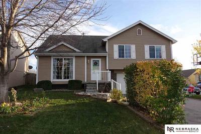 Omaha Single Family Home For Sale: 18747 Borman Street