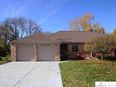 Omaha Single Family Home For Sale: 6028 Oak Hills Drive