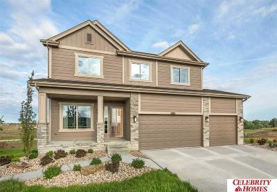 Omaha Single Family Home For Sale: 17836 Tibbles Street