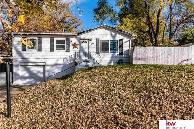 Bellevue Single Family Home For Sale: 803 Terrace Avenue