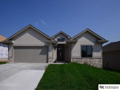 Omaha Single Family Home For Sale: 15408 Norwick Drive