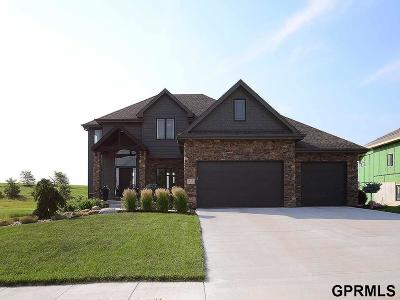 Cass County Single Family Home For Sale: 313 S Lakeview Way