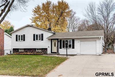 Omaha Single Family Home For Sale: 11021 Jones Street