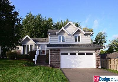 Omaha NE Single Family Home For Sale: $229,000