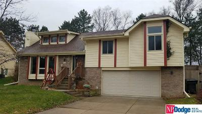 Papillion Single Family Home For Sale: 1329 Scott Road