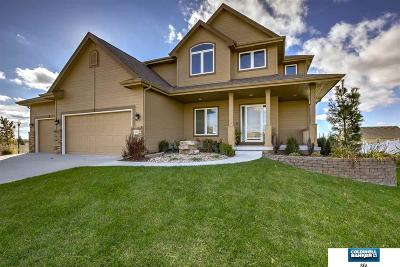 Shadow Lake Single Family Home For Sale: 12392 S 78 Street