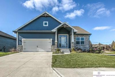 Cass County Single Family Home For Sale: 100 Eagle View Drive