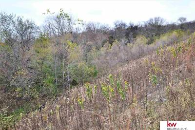 Plattsmouth Residential Lots & Land For Sale: 7r 8r Bestmann Drive