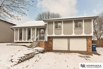 Omaha Single Family Home For Sale: 7202 Audrey Street
