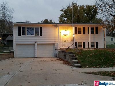 Omaha Single Family Home For Sale: 10065 Manderson Street