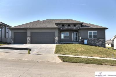 Papillion Single Family Home New: 10416 S 105th Street