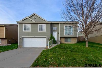 Omaha Single Family Home New: 6210 S 191st Street