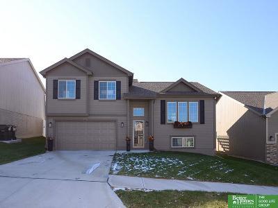 Omaha Single Family Home New: 16409 Redman Avenue