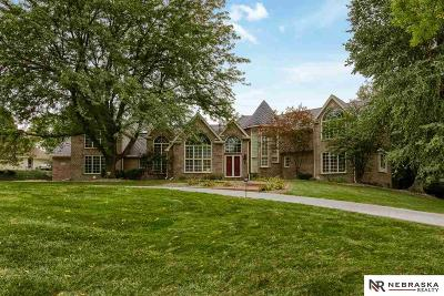 Omaha NE Single Family Home New: $1,295,000