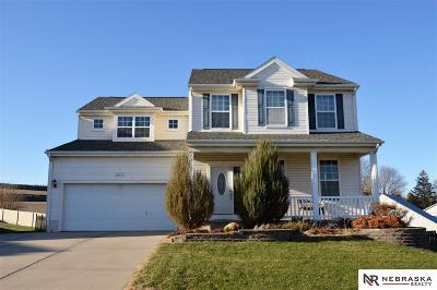 Omaha NE Single Family Home New: $264,900