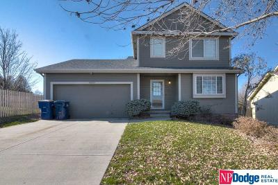 Omaha Single Family Home New: 4568 S 179th Street