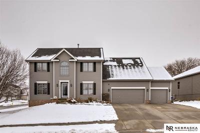 Omaha Single Family Home New: 7671 S 159 Street