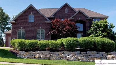 Single Family Home For Sale: 19461 Walnut Circle