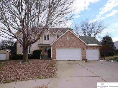 Omaha Single Family Home New: 14104 Edna Circle