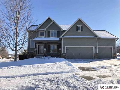 Omaha Single Family Home For Sale: 10201 Spyglass Drive