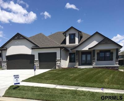 Omaha Single Family Home For Sale: 18924 Cypress Drive