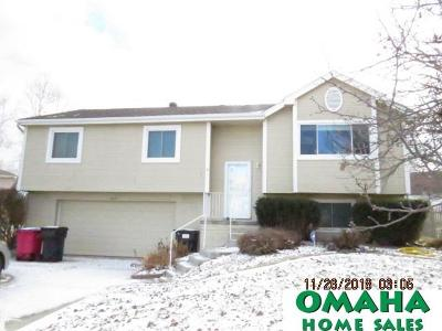 Single Family Home For Sale: 20111 Gateway Road