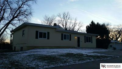 Papillion Single Family Home For Sale: 529 E 3rd Street