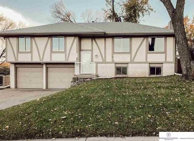 Bellevue Single Family Home For Sale: 3301 Redwing Drive