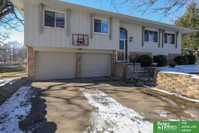 Bellevue Single Family Home For Sale: 212 Bellevue Boulevard