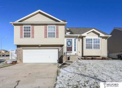 Omaha Single Family Home For Sale: 16626 Erskine Street