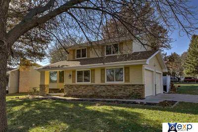 Omaha NE Single Family Home New: $226,000