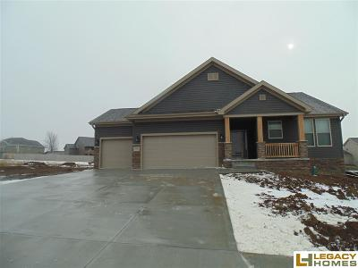 Plattsmouth Single Family Home New: 2205 Hedgeapple Road