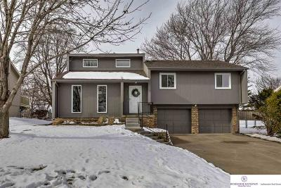 Single Family Home New: 4822 S 157th Street