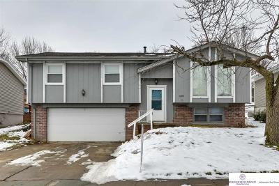 Omaha NE Single Family Home New: $159,900