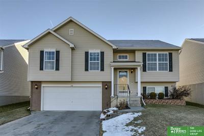 Omaha NE Single Family Home New: $183,500