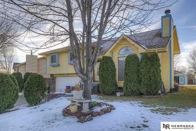 Omaha Single Family Home For Sale: 15239 Pasadena Avenue