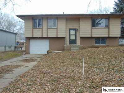 Plattsmouth Single Family Home For Sale: 1408 Tammy Lane