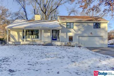 Omaha Single Family Home For Sale: 1006 S 114 Street