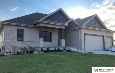 Papillion Single Family Home For Sale: 10205 S 106th Street