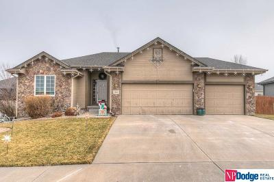 Single Family Home For Sale: 10009 S 179 Street