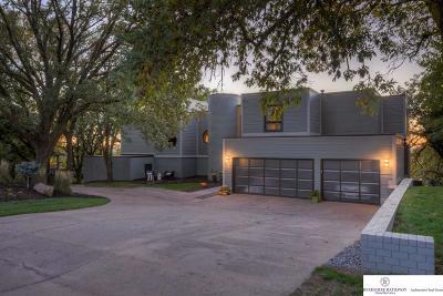 Single Family Home For Sale: 508 Skyline Drive
